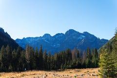 Mooi landschap van bergen, mening bij de Bergen van Zakopane Tatra in Polen stock fotografie