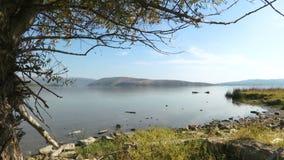 Mooi landschap van de Donau stock footage