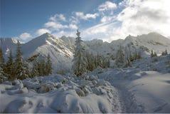 Mooi landschap van de grote sneeuwbergpieken Stock Foto