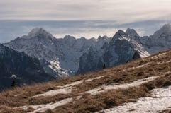 Mooi landschap van de grote sneeuwbergpieken Stock Fotografie