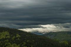 Mooi landschap van de lenteaard met groene open plek en bos in Plana-de berg van berg tovard Rila Royalty-vrije Stock Afbeelding