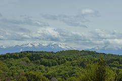Mooi landschap van de lenteaard met groene open plek en bos in Plana-de berg van berg tovard Rila Stock Foto's
