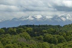 Mooi landschap van de lenteaard met groene open plek en bos in Plana-de berg van berg tovard Rila Royalty-vrije Stock Foto's
