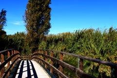 Mooi landschap van een brug Royalty-vrije Stock Fotografie