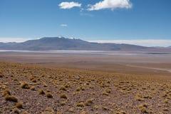 Mooi landschap van een lagune in altiplano in Bolivi? stock afbeelding