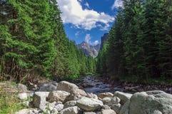 Mooi landschap van Hoge Tatra-bergen slowakije Stock Fotografie