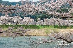 Mooi landschap van idyllisch Japans platteland stock afbeelding
