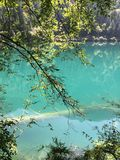 Mooi landschap van Jiuzhaigou in China, bos, Hubo, groen water en groene heuvels! stock foto