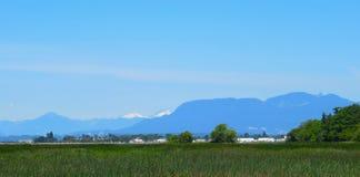 Mooi Landschap van Landbouwgrond in Ladner, Deltab C Canada in de Lente van 2018 stock foto