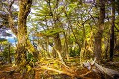 Mooi landschap van lengabos, bergen en lagune bij Band Royalty-vrije Stock Fotografie