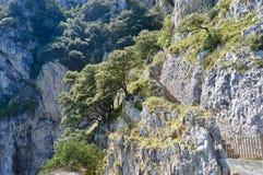 Mooi landschap van Reusachtige klippen stock afbeeldingen