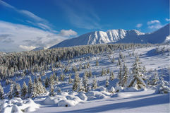 Mooi landschap van sneeuwbergen Stock Foto