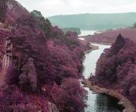 Mooi landschap van surreal afwisselende gekleurde landschapsthrou Stock Foto's