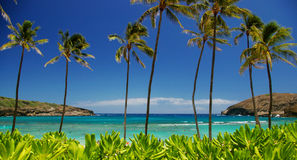Mooi landschap van tropische oceaan Stock Fotografie