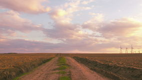 Mooi landschap van weide met weg stock videobeelden