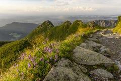 Mooi landschap van Westelijke Tatra-bergen Stock Afbeeldingen