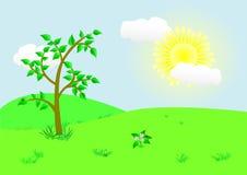 Mooi landschap. Vector illustratie. Royalty-vrije Stock Foto's