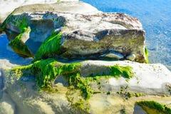Mooi landschap, zeegezicht, verbazende aardachtergrond met rotsen en blauw water Stock Afbeeldingen