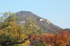Mooi landschap in Zuid-Korea Royalty-vrije Stock Foto