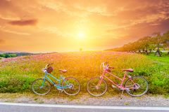 Mooi landschapsbeeld met fietsen bij zonsondergang royalty-vrije stock afbeelding