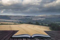 Mooi landschapsbeeld van reusachtig landbouwgebied van gerst o Royalty-vrije Stock Foto's