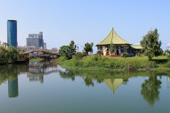 Mooi meer in Batumi, Georgië Royalty-vrije Stock Foto's