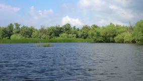 Mooi meer in de delta van Donau stock footage