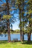 Mooi meer en bos op zonnige de lentedag royalty-vrije stock fotografie