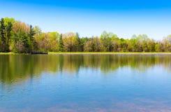 Mooi meer met bosbezinning op zonnige de lentedag stock fotografie