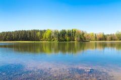 Mooi meer met bosbezinning op zonnige de lentedag stock afbeelding