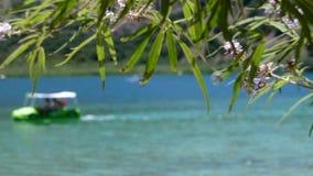 Mooi meer met kleine boten stock videobeelden