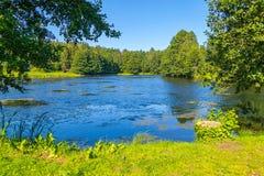 Mooi meer met rimpelingen op blauw water, in het midden van een groen park onder een duidelijke blauwe hemel stock foto