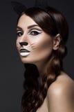 Mooi meisje in beeld van kat met van het kunstsamenstelling en kant oren Het Gezicht van de schoonheid Stock Foto's