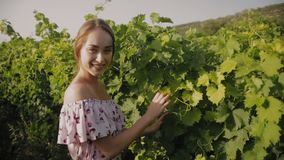 Mooi meisje in de kledingstribunes bij de wijnstok stock video