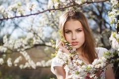 Mooi meisje in de takken Stock Fotografie