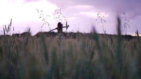Mooi meisje die in kleding binnen door gebied wat betreft tarweoren bij zonsondergang lopen stock video