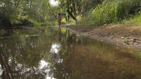 Mooi meisje die op de bank van bosrivier lopen stock footage