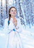 Mooi meisje in een de winterbos Stock Afbeelding