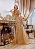 Mooi meisje in een lange gouden kleding stock afbeelding
