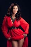 Mooi meisje in een rode kleding Stock Foto