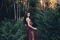 Mooi meisje in een rode kleding Royalty-vrije Stock Afbeelding