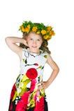 Mooi meisje en wilde bloemen Royalty-vrije Stock Foto's