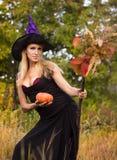 Mooi meisje in heksenkostuum met bezemsteel Royalty-vrije Stock Afbeeldingen