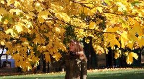 Mooi meisje in het park Stock Afbeelding