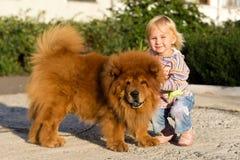 Mooi meisje met de hond Stock Foto