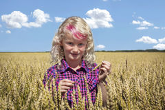 Mooi meisje met een roze strook in haar haar die zich op een tarwegebied bevinden Royalty-vrije Stock Foto