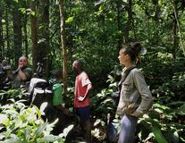 Mooi meisje met Groep toeristen in wildernis dichtbij door Mondica kamp Het grensgebied tussen de Kongo en Centraalafrikaans Rep Royalty-vrije Stock Afbeelding