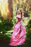 Mooi meisje met lang die haar in een vlecht, in korset en prachtige roze kleding wordt gevlecht Stock Foto