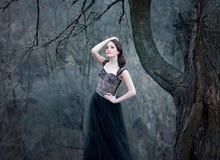 Mooi meisje met lang haar Royalty-vrije Stock Foto
