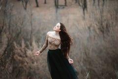Mooi meisje met lang haar Stock Afbeelding